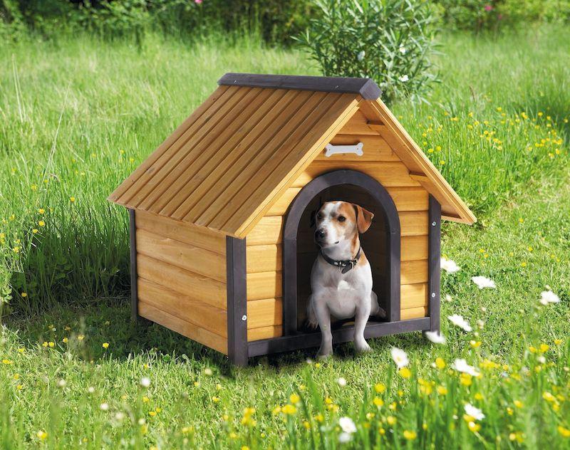 Niche pour chien bois plastique pvc bien choisir for Niche exterieur pour chien